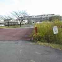埼玉クリテコースの下見
