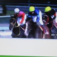 GⅢ 第37回 関西テレビ放送賞ローズステークス/ マラソンは 一番人気 消えたが!!  № 690