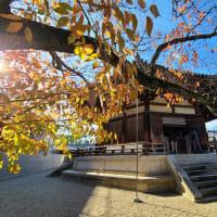 晩秋の斑鳩路 初代世界遺産法隆寺