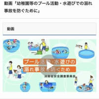 幼稚園等のプール活動・水遊びでの溺れ事故を防ぐために