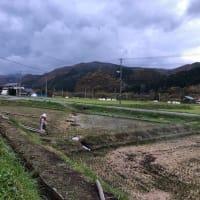 2019百姓日記@稲刈り&稲穀き
