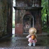 ミモロといっしょに京散歩。早朝の「南禅寺」。雨に濡れた苔と緑の美しさに心洗われるよう…