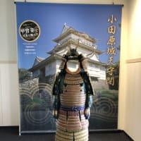 小田原城へ行ってきました