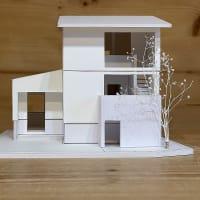 【ministock-12(lab)】48枚も入るけど7枚で十分です-新潟産小さな家-
