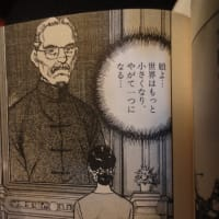 大阪都構想は日本の南北朝鮮化です。日本が南北に分断されることです。【これ?ホントだぜ。大阪のイスラエル化なんだよな。】