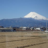 富士山ビューを満喫 「富士山三島東急ホテル」