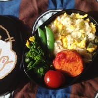 4/19)FM YAMATOと高菜炒飯弁当