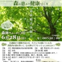第1回森林療法体験会 開催!