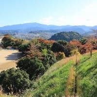 秋景色~~