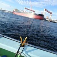 午後フグ船が出船開始です♪