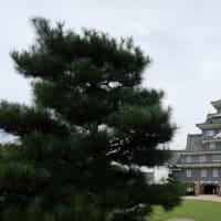 岡山を歩きながら 2019年秋の旅(85)