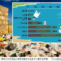 鎌倉のシロナガスクジラ漂着の原因は?今、世界で起きている「海洋プラスチック」の問題