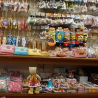 修学旅行生におすすめの京みやげが豊富に揃う。京都駅そばの「京みやげ 佐野家」