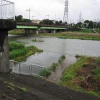7月16日、午前の田んぼと午後の川の様子~(^^♪♬