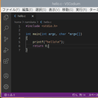 VS codeをRaspberry Piで使う