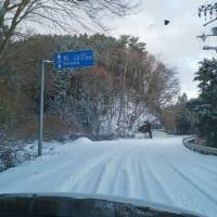 雪だ!! 久万高原へ