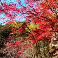 昇仙峡渓谷下り