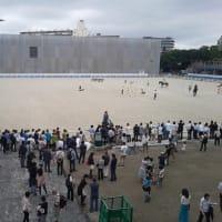 イベント「JRA馬事公苑を見に行こう!」【JRA馬事公苑】