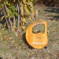 楽器リラの成長
