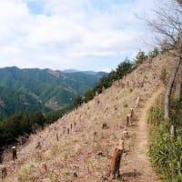 芽吹きの里山へ ~ 戸倉三山