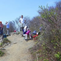アケボノ咲く西赤石山7日