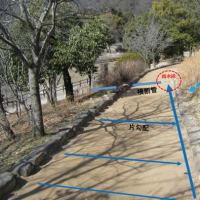 土系舗装  不具合の原因