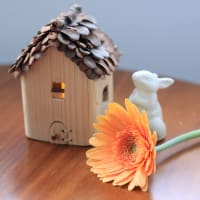 今週のお花一眼レフバージョンブログアップ版です。うさぎさんと家があります