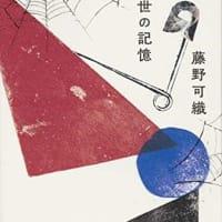 本・藤野可織 「来世の記憶」