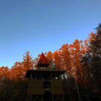 これからの秋。。晩秋へ 昨年のようす