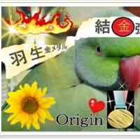 応援コラ画フリー・羽生選手全力応援!