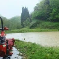 待ちに待った、雨!・・・ようやく山間の田圃も水が溜まり、雨の中合羽を着て、代掻きです。