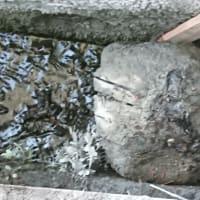 隣の廃屋の補修と排水溝の石動かし