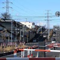 初歩きは 富士山の見える荒幡富士へ(埼玉・所沢)
