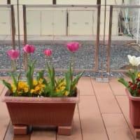 4月の美花部会