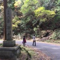 プチハイキング(栗東 こんぜの里)