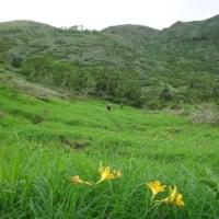 笠羽谷~湿原と桧そして藪漕ぎ~
