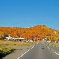 北海道移住 とある日の通勤風景で・・・