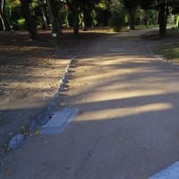 園路舗装と排水