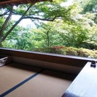 薫風の五島美術館茶会