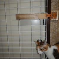猫部屋の脱走防止よけ新しく作っていただきました。