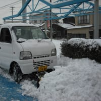 新橋サカタマツダ自動車です
