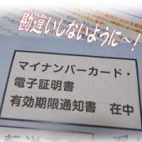 マイナンバーカードの更新は「個人番号カードの更新」と「電子証明書の更新」の2つ!勘違いしないように