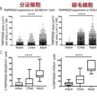 新型コロナウイルス感染症COVID-19:最新エビデンスの紹介(11月22日)