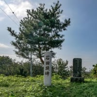 石田堤【埼玉県行田市】