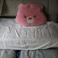 テト君の寝床