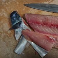 マサバ棒寿司とイカナゴ釜揚げ