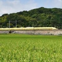 太子町 ドクターイエロー 上り(2020.9.4)