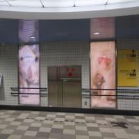 仙台市交 八木山動物公園駅