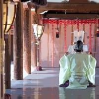下鴨神社 糺ノ森 その9