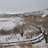 雨アラレ雪降る八島湿原を歩き、静寂の音を聞く。